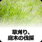 草刈り、庭木の伐採
